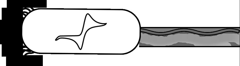 Big-bacteria-White